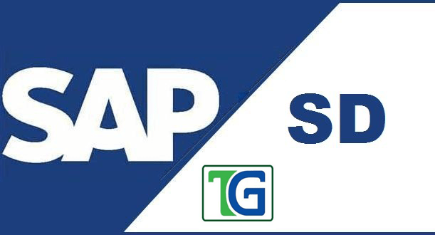sap sd module overview pdf