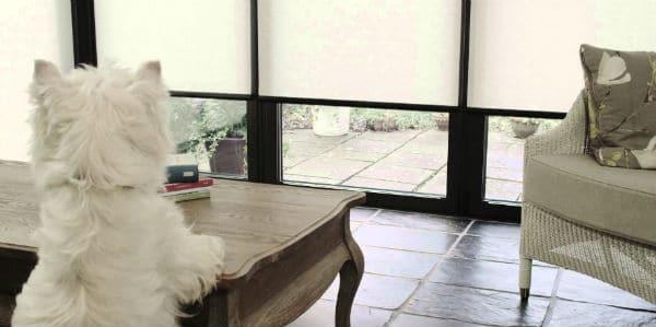 home smart blinds