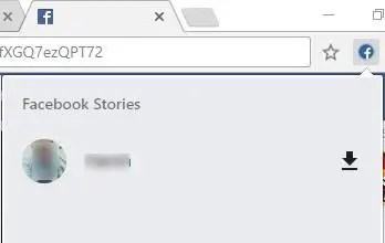 fb stories video download