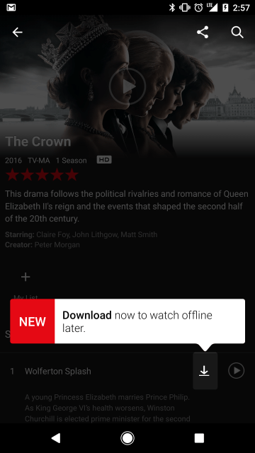 netflix offline use
