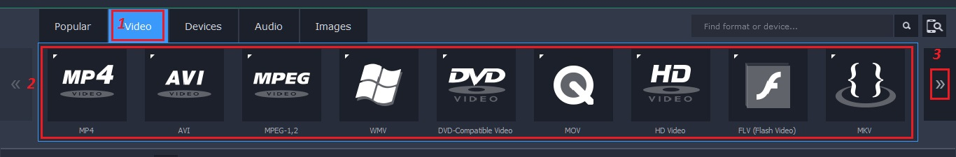 video format