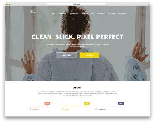 https://cdn.colorlib.com/wp/wp-content/uploads/sites/2/illdy-free-business-landing-page-theme.jpg