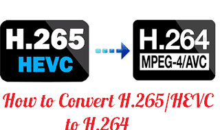 h265 to h264 guide