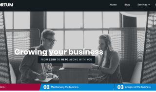 business website theme