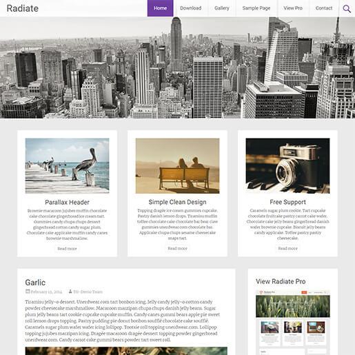 free porfolio WordPress themes - radiate
