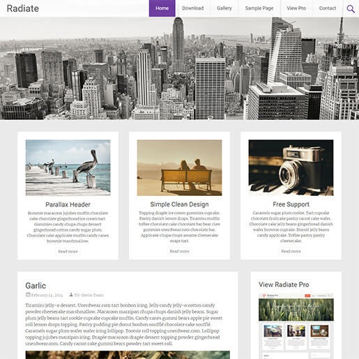 free porfolio WordPress themes - radiate