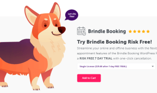 brindle booking