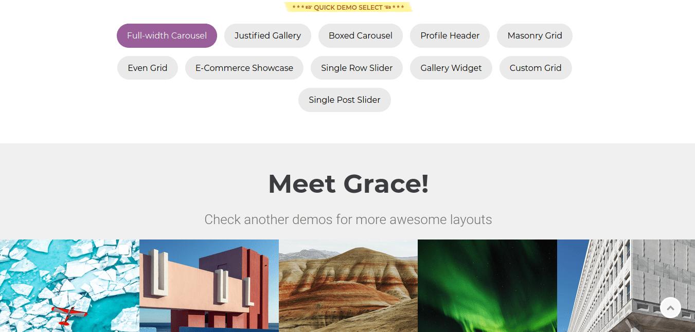 Grace WP plugin Layouts