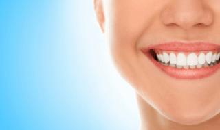 dentist dental