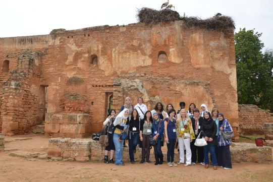 Delegation trip to Jordan with mentors and fellows in 2015.