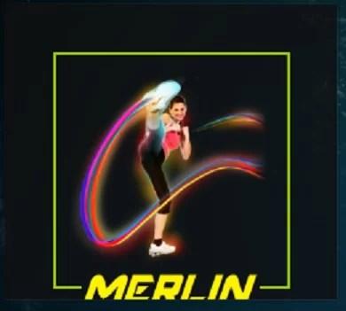 Merlin Fits Addon