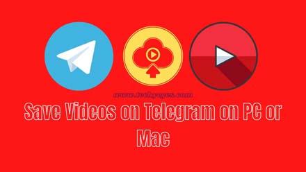 Save Videos on Telegram on PC or Mac
