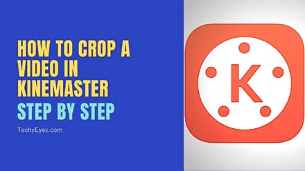 Crop a Video in KineMaster