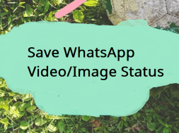 save whatsapp video status