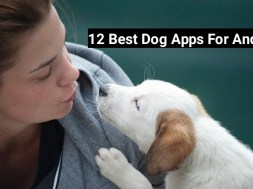best dog apps for android
