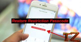 restore restriction passocde