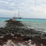pelseart island