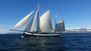 Set sail in Iceland