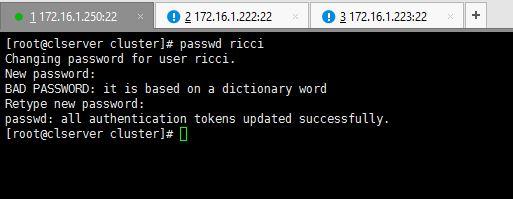 Set Ricci Password