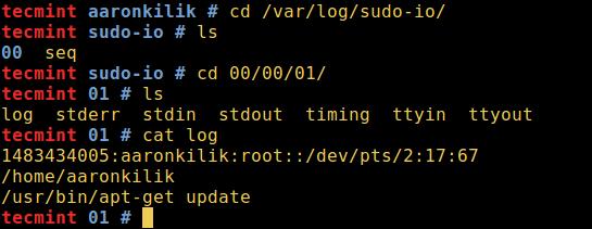 Log sudo Input Output