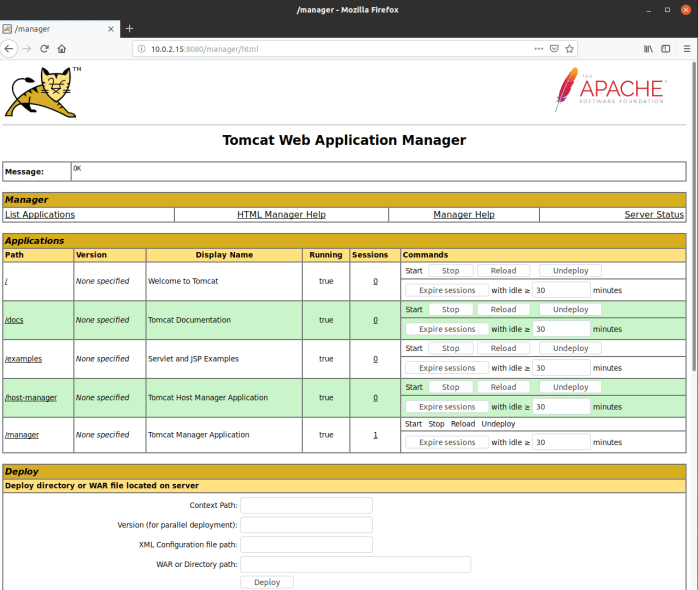 Access Apache Tomcat Manager
