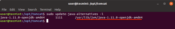 Find Java Home