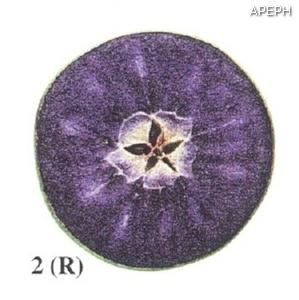 Test almidon fruta pepita tipo radial estado 02