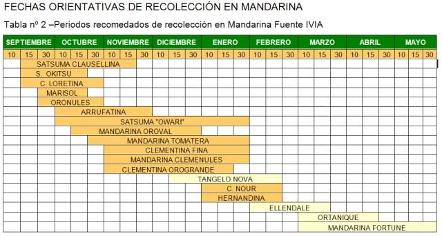 Calendario recoleccion mandarina