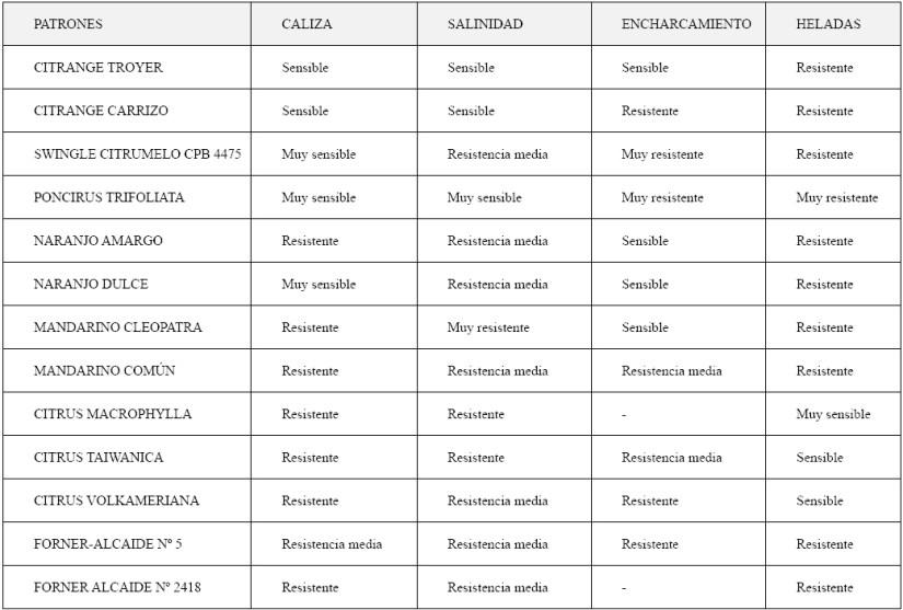 Produccion integrada citricos ANEXO I COMPORTAMIENTO AGRONOMICO DE PATRONES FRENTE A CONDICIONES ECOLÓGICAS ADVERSAS FISIOPATIAS