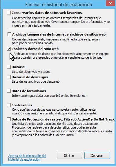 Casilla de Cookies y datos del sitio web en cómo borrar cookies en Internet Explorer