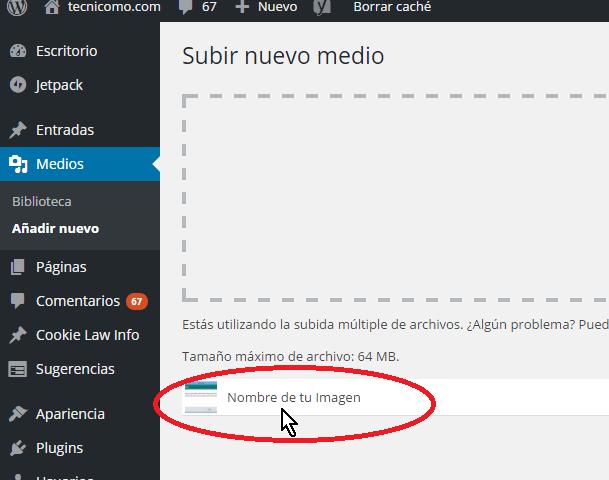 Prueba de que la imagen fue subida exitosamente en cómo resolver el error HTTP al subir imágenes en WordPress