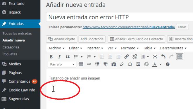 Posicionando el cursor donde quieres que aparezca la imagen en cómo resolver el error HTTP al subir imágenes en WordPress
