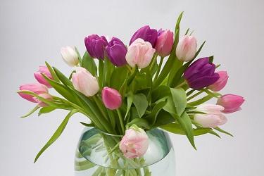 Cómo comprar flores en Appleyard Flowers