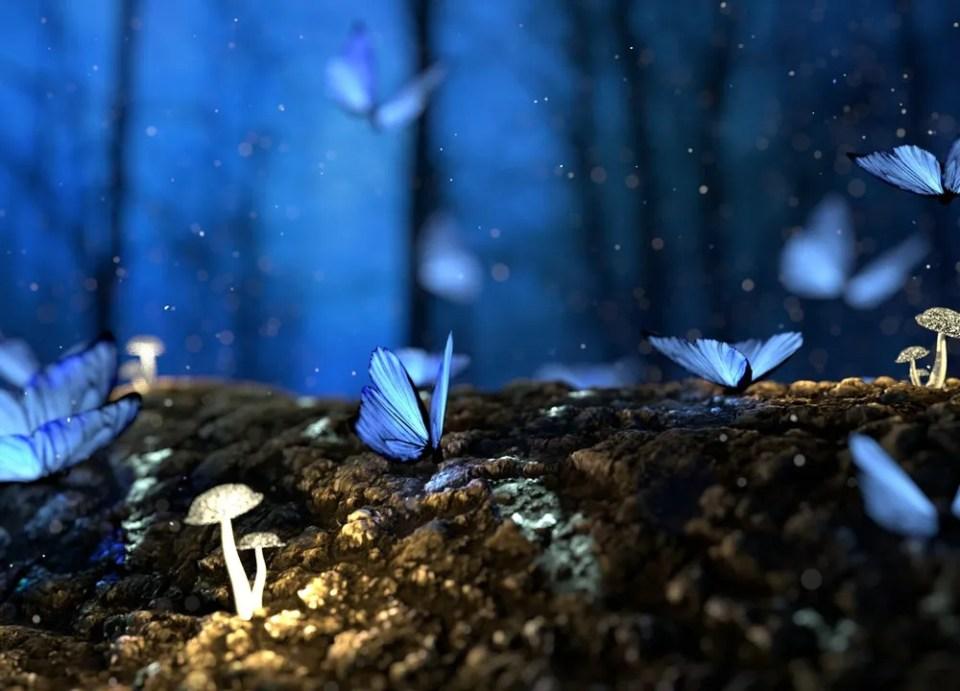 Gracias a la ciencia ficción, cada vez más nos preguntamos qué es el efecto mariposa