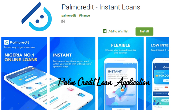 Palm Credit Loan Application