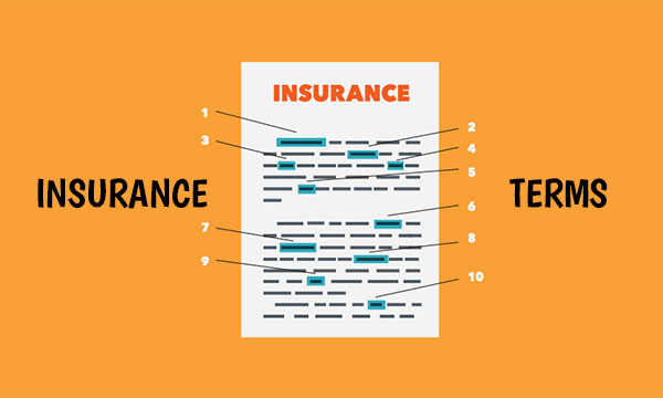 Insurance Terms – Life | Health | Auto Insurance Terminologies
