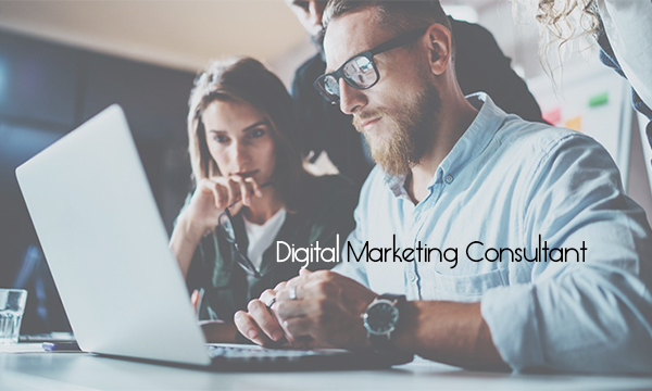 Digital Marketing Consultant – What to Expect From a Good Digital Marketing Consultant