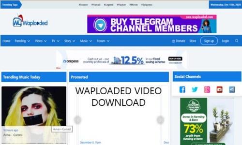 Waploaded Video Download