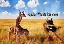 Popular Wildlife Reserve - American Prairie Reserve | Top National Park in Africa