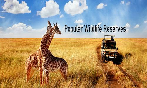 Popular Wildlife Reserve - American Prairie Reserve   Top National Park in Africa