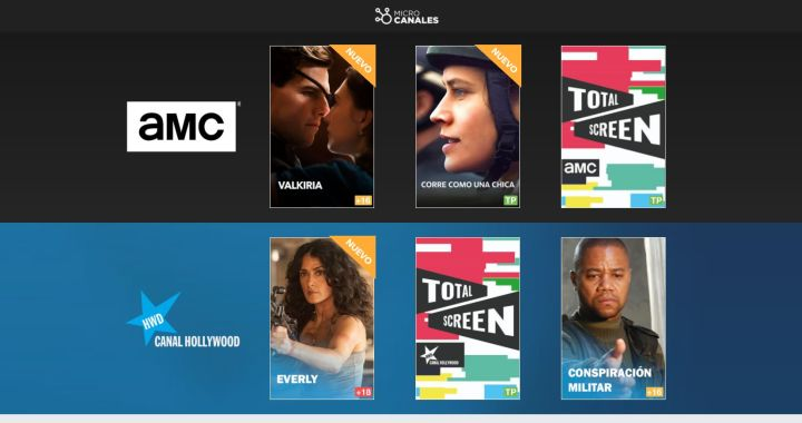 FireShot Webpage Screenshot #068 - 'Microcanales' - microcanales.com