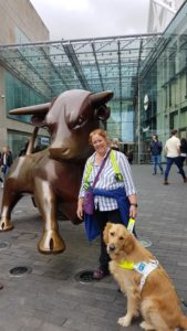 Ma and Teddy posing in front of the life-size brass bull outside Burmingham's Bullring shopping centre