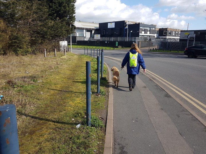 Ma wearing blue coat and hi viz yellow backpack striding down the pavement with Teddy guiding her. The road is on their RHS and grass in on their LHS. The shot is taken from a little way behind them
