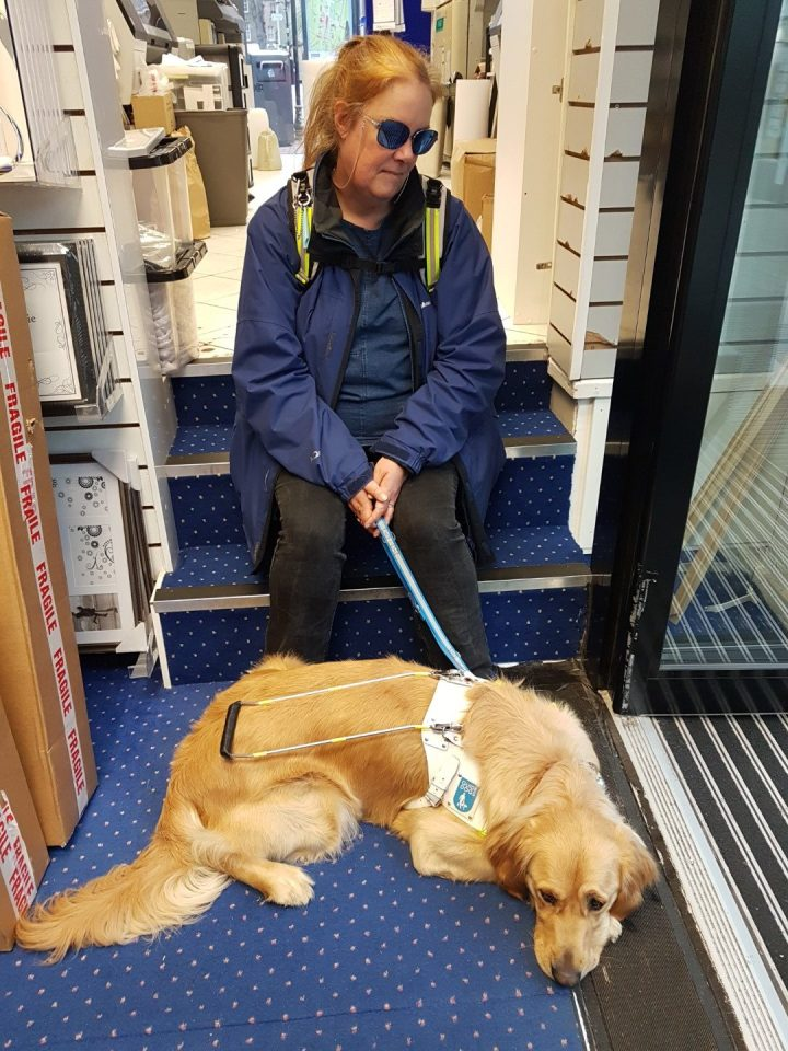 Ma, wearing blue coat and blue-lensed glasses, sitting on steps by a shop doorway. Teddy is lying down at her feet, wearing his white Guide Dog harness. He is watching across the shop.