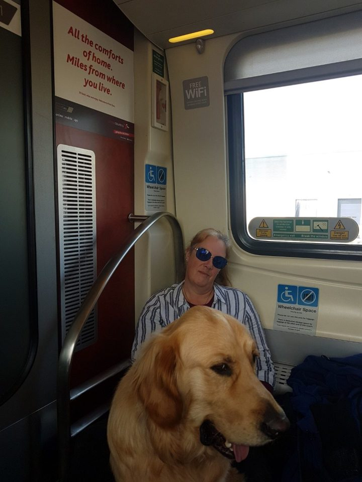 "Mummy sitting on the floor of the train in the wheelchair bay with Teddy sitting in front of her. Above is a sign proclaiming ""All the comforts of home..."""
