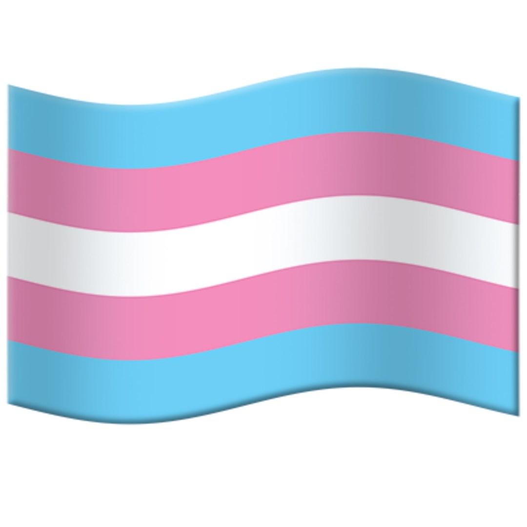 Transgender Pride Flag Emoji – FINAL FOR 2020!