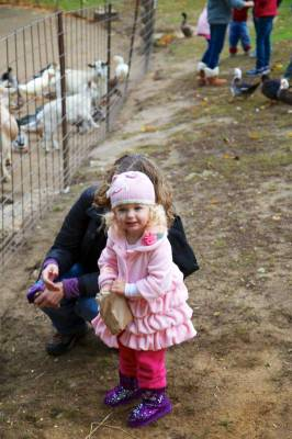 Leah still enjoying herself feeding the goats.