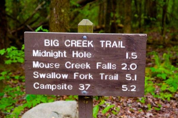 Mouse Creek Falls on Big Creek Trail