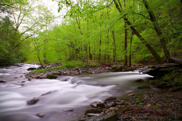 GSMNP - Laurel & Little River Roads