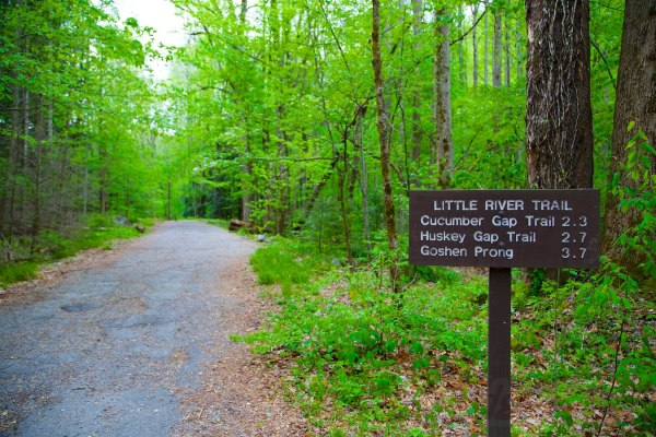 Little River Trail at GSMNP